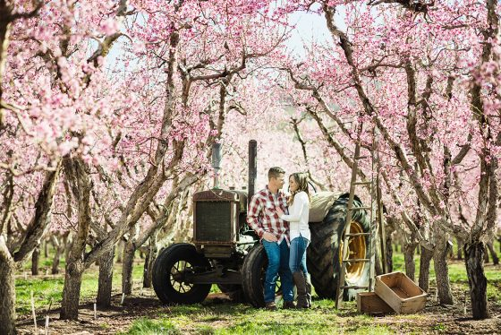 orchard-engagement-photos-1