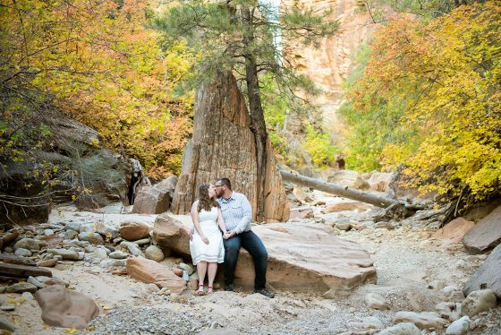 zion-national-park-engagement-photos-1