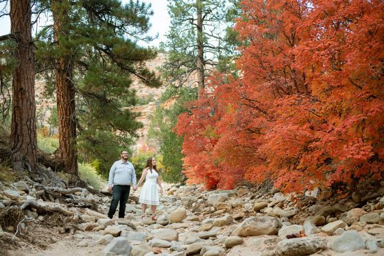 zion-national-park-engagement-photos-14
